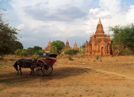 Hest og kjerre i Bagan