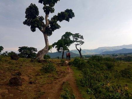 Landskap ved Blå Nilen-fallene