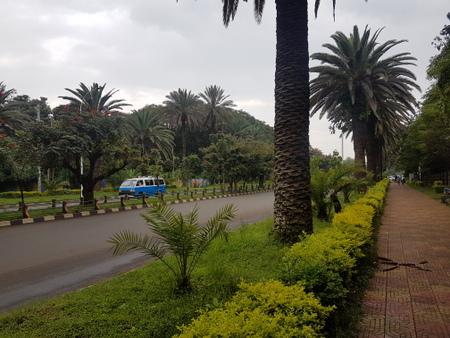 Boulevard i Bahir Dar