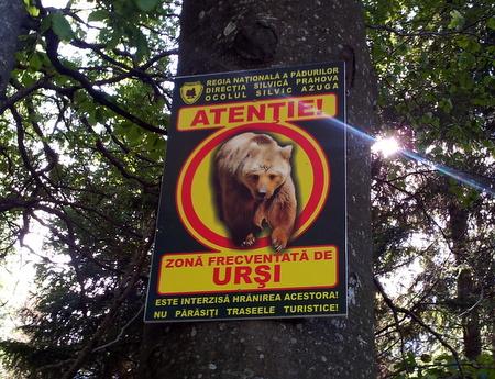 Bjørneskilt i Romania