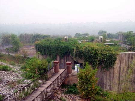 Utsikt over en liten del av Pandasenteret