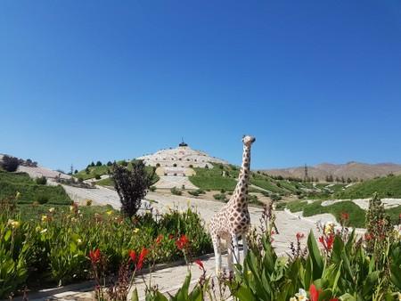 Krigsmonument med giraff