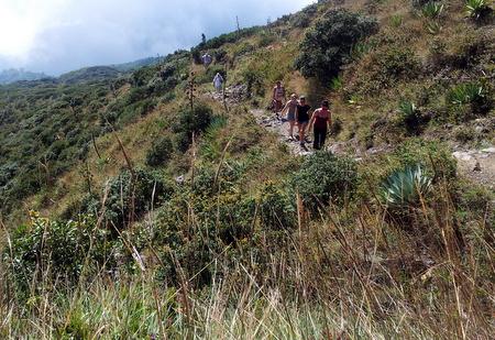 Gruppe på vei opp Santa Ana vulkanen