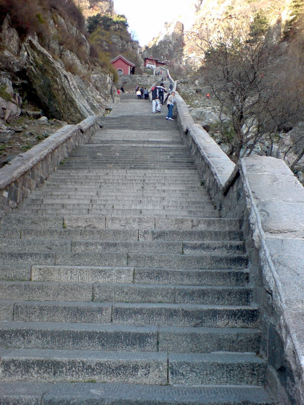 Trapper på Tai Shan