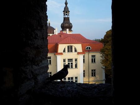 Utsikt fra bymuren